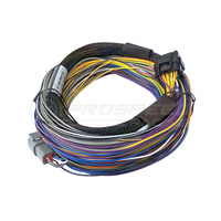 Haltech Elite 750 Basic Universal Wire-In Harness Only - 2.5m