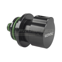 "Raceworks Fuel Rail Adapter 1/8"" NPT Suits Ford Turbo 6"